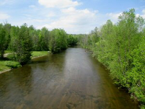 Rifle River from Maple Ridge Road Bridge - 1 - 300 x 225